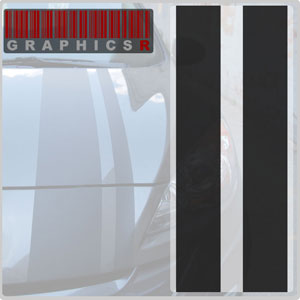 Racing Stripes - Double Trouble Graphic
