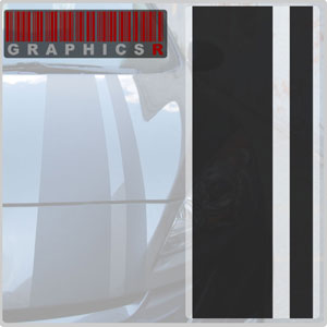 Racing Stripes - Cobra Style Graphic